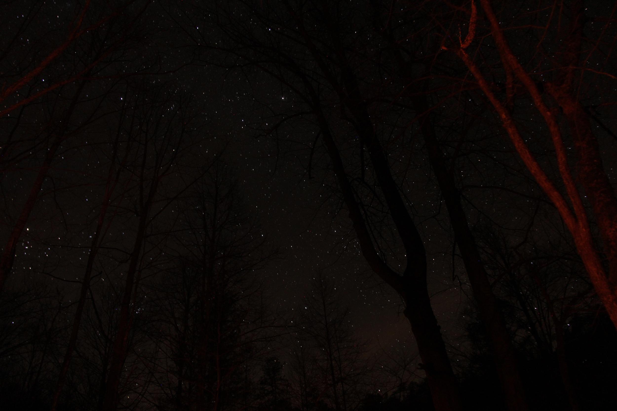 Clear sky, bright stars.