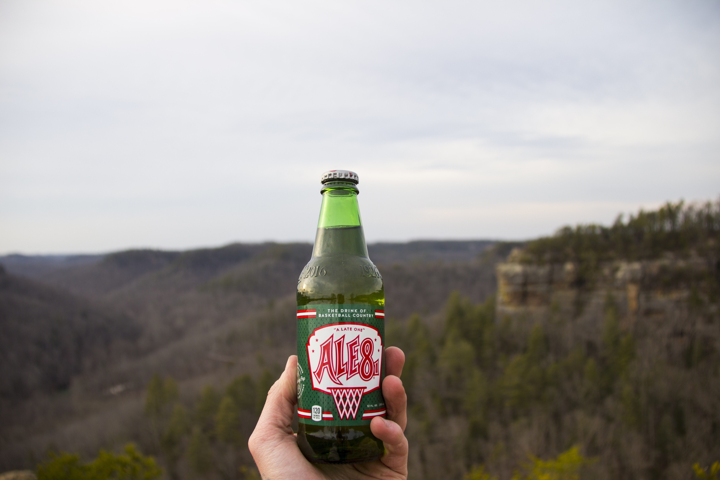 Got a good shot of my Ale 8 on Half Moon. Sorry to say I actually drank 3 six packs of these in four days. If we can find it in Bowling Green it's usually not bottled or too expensive.