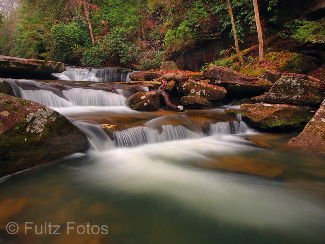 Photograph by Bill Fultz