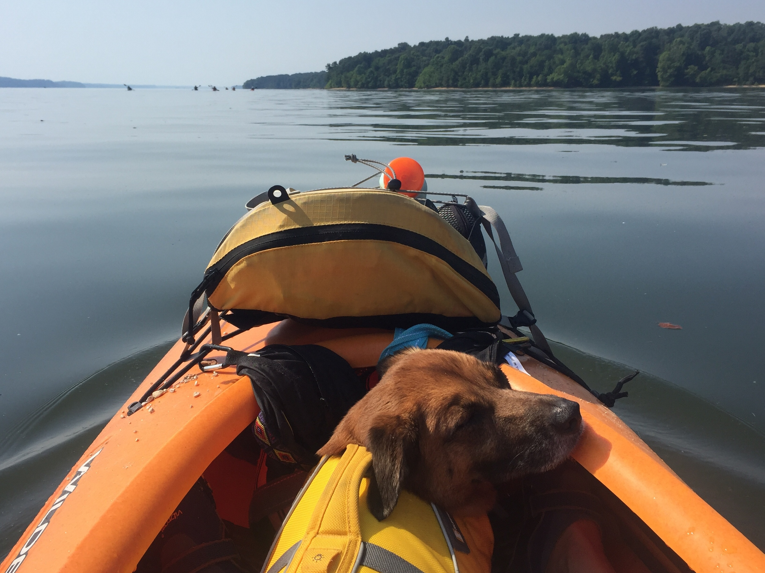 Maddy spent the trip swimming and and kayaking. Photo by Kimberly Bischoff.