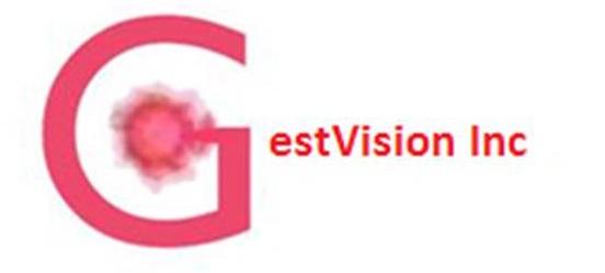 GestVision_Inc_Logo 2.jpg