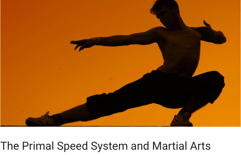 A recent blog post on why sprint training increases power and reduces injuries for martial artists. Written for Franz Snideman of primalspeed.com
