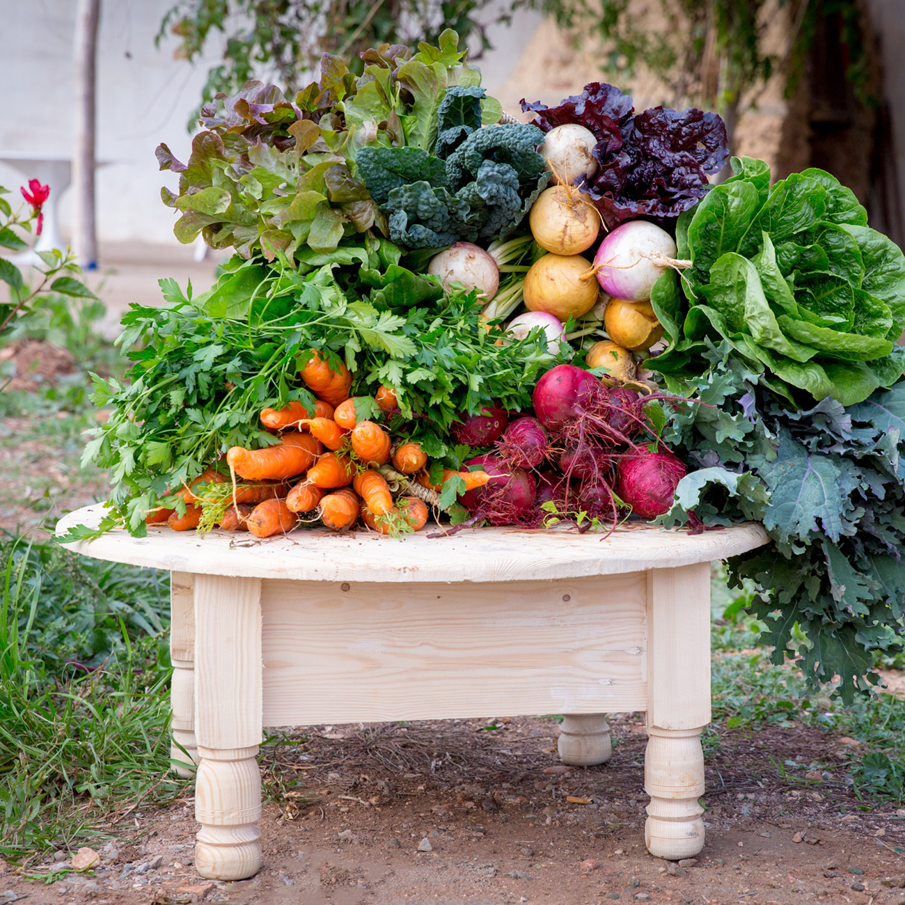 Bbio organic welcome basket
