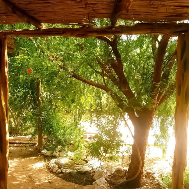 bbio-farm-veranda.jpg