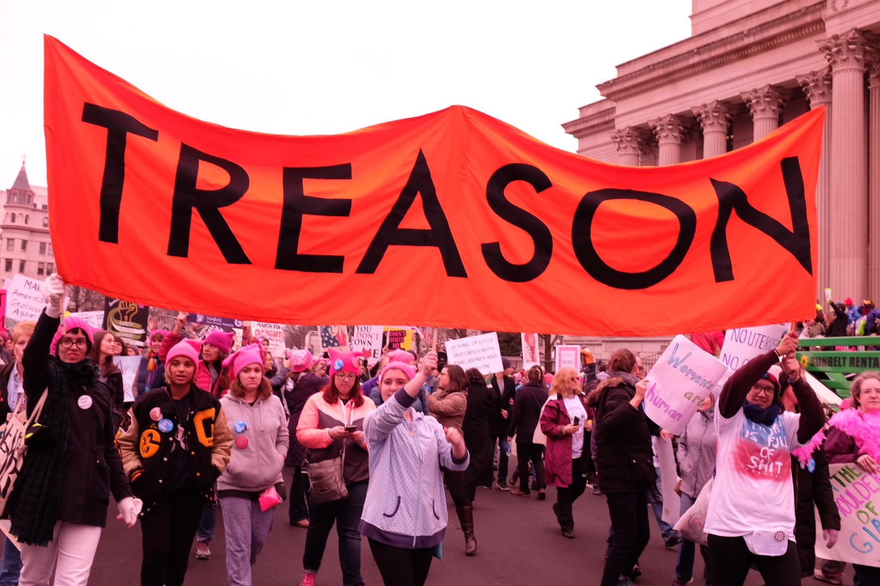 Sarah Ullman. The Women's March on Washington, January 21, 2017.