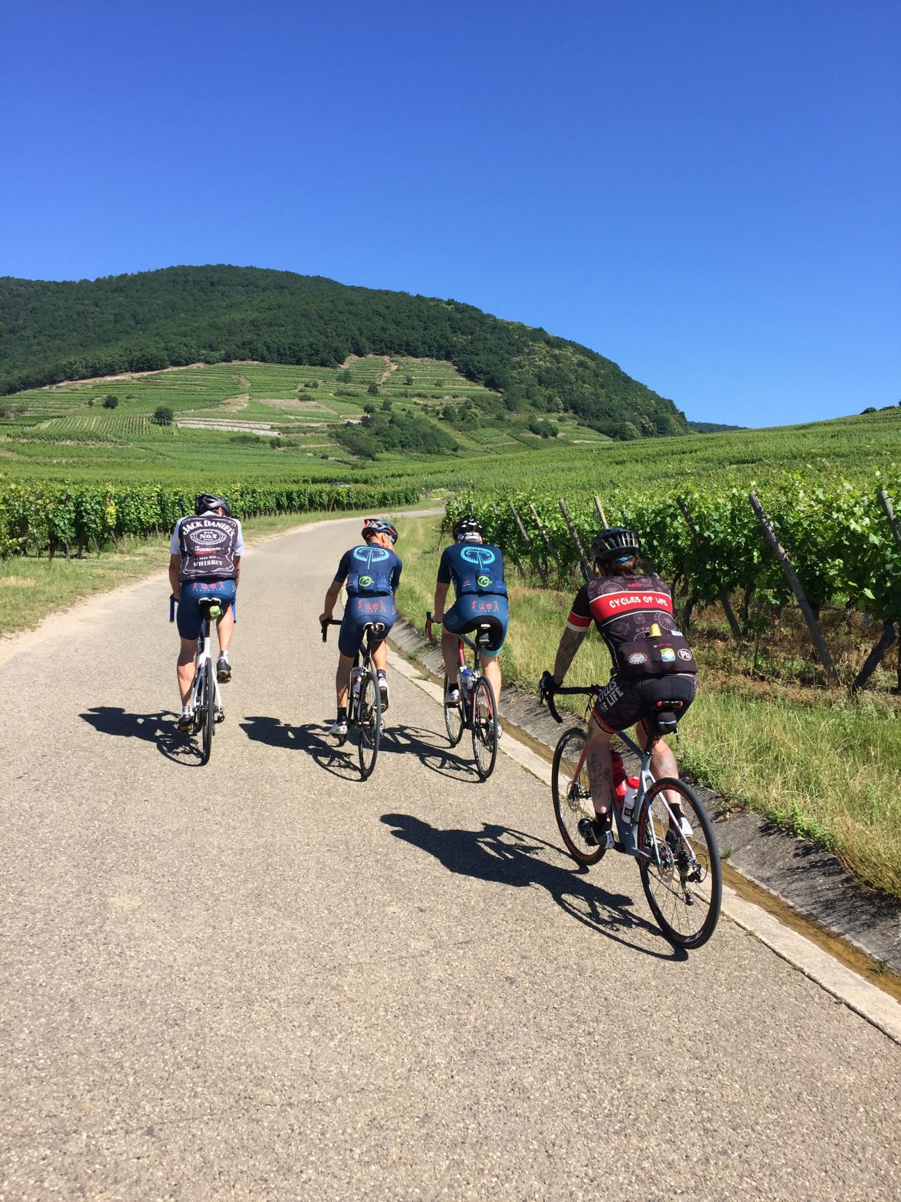 Through vineyards we rode and from its fruit we drank