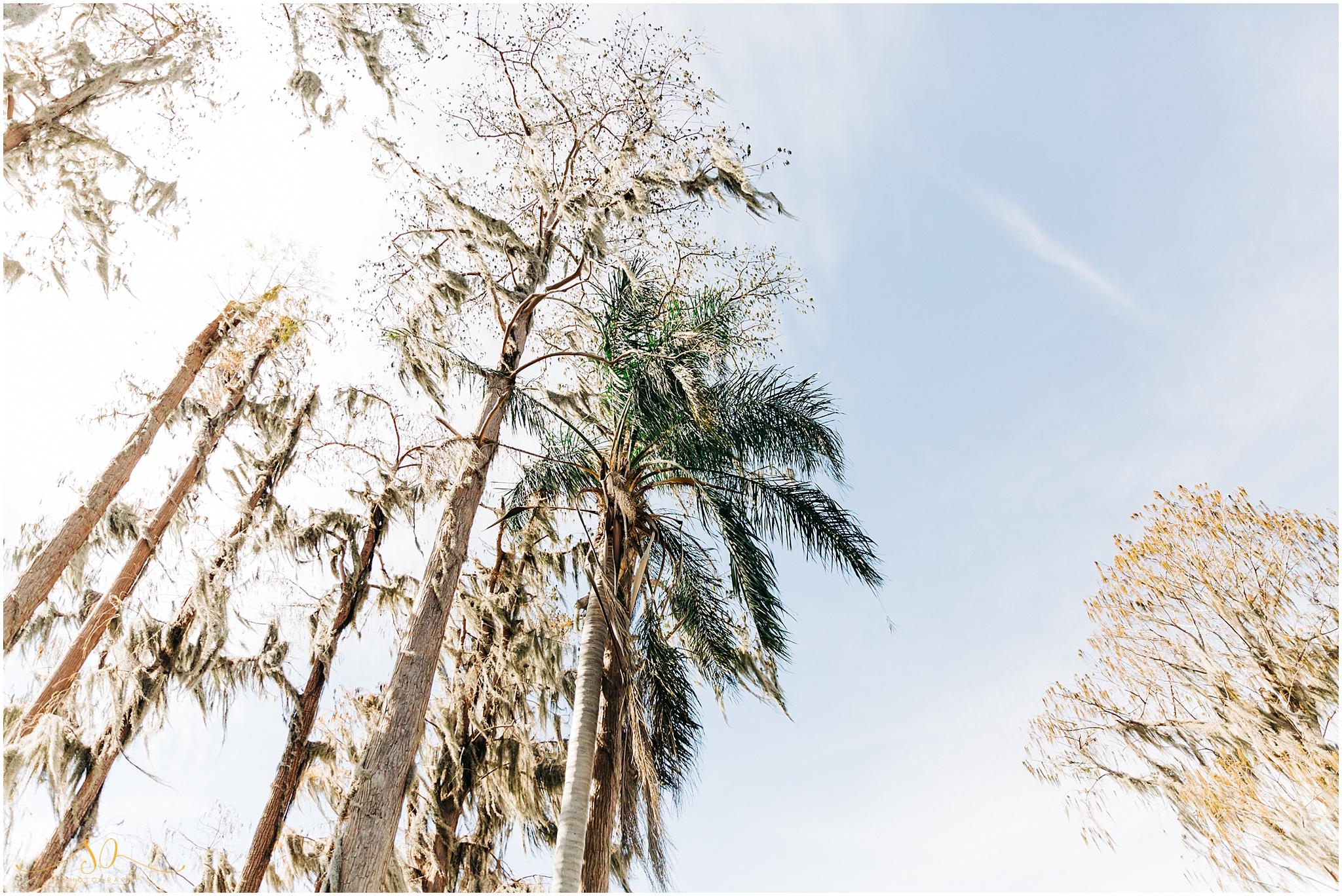 cypress grove estate house wedding_0047.jpg