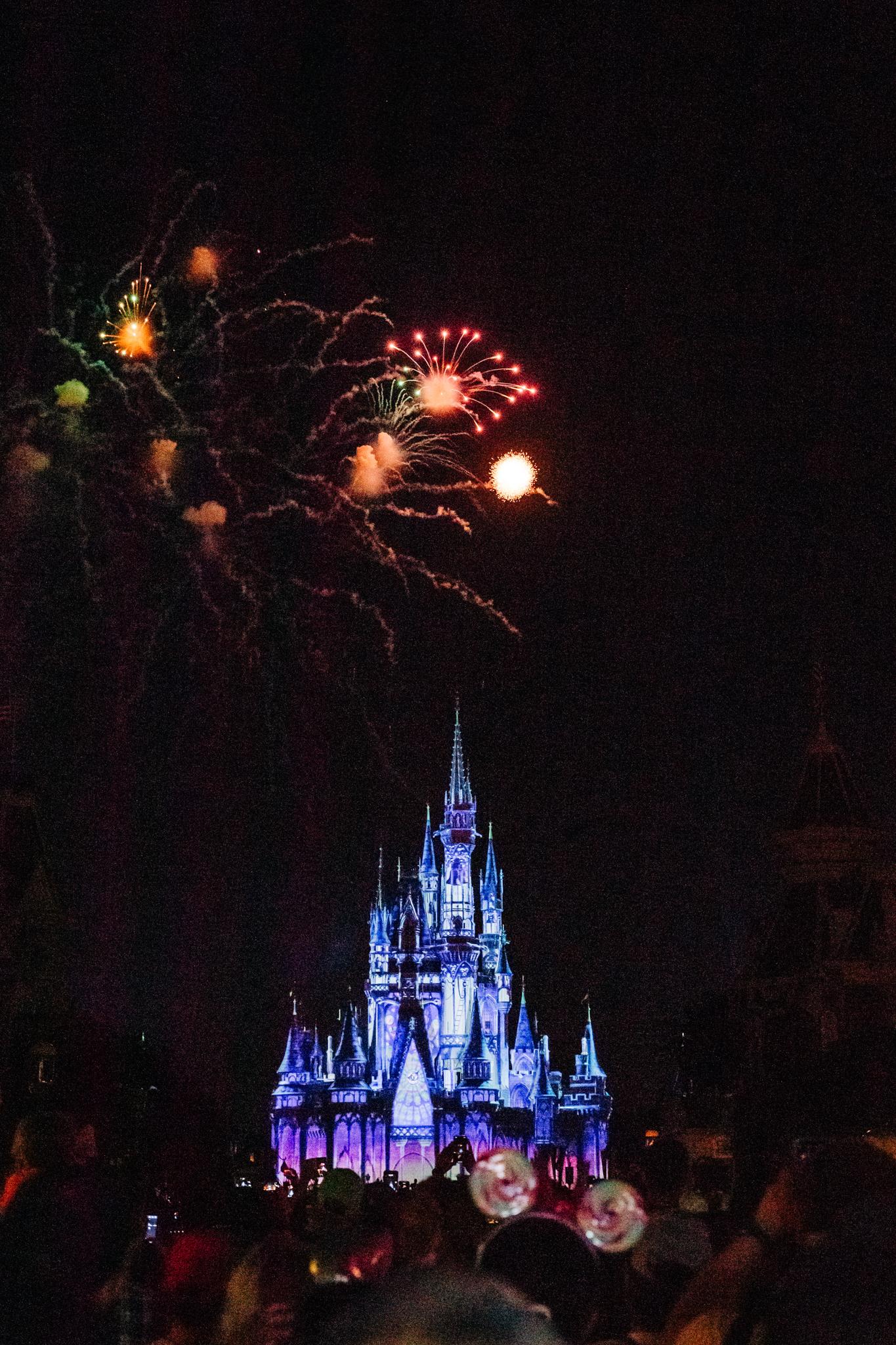 Disney Engagement Session-91.jpg