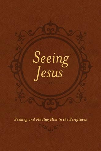 Seeing Jesus cover.jpg