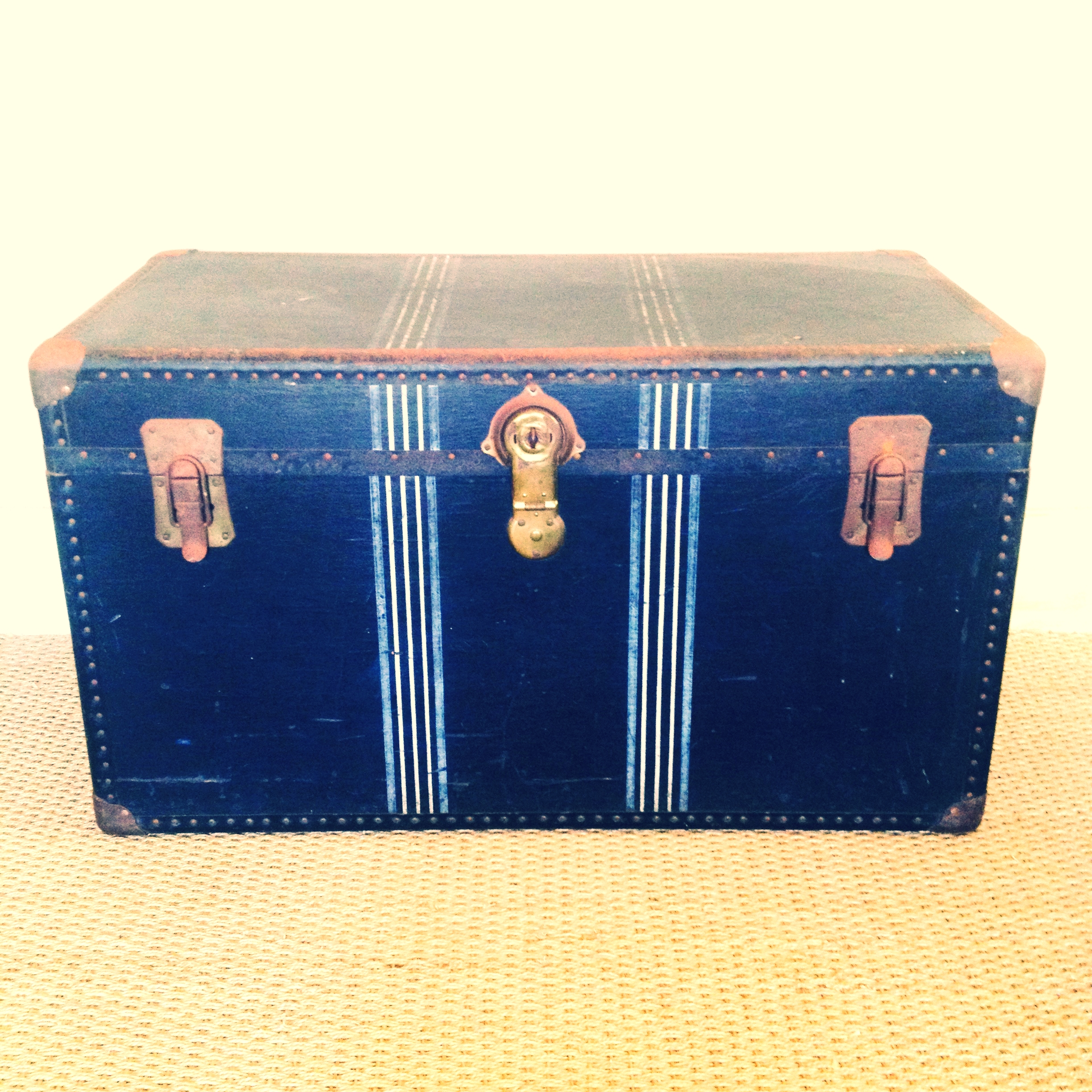 Blue Stripe Trunk $45