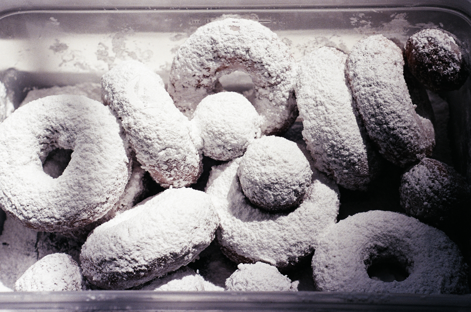 powdered cake doughnuts | apt 2b baking co