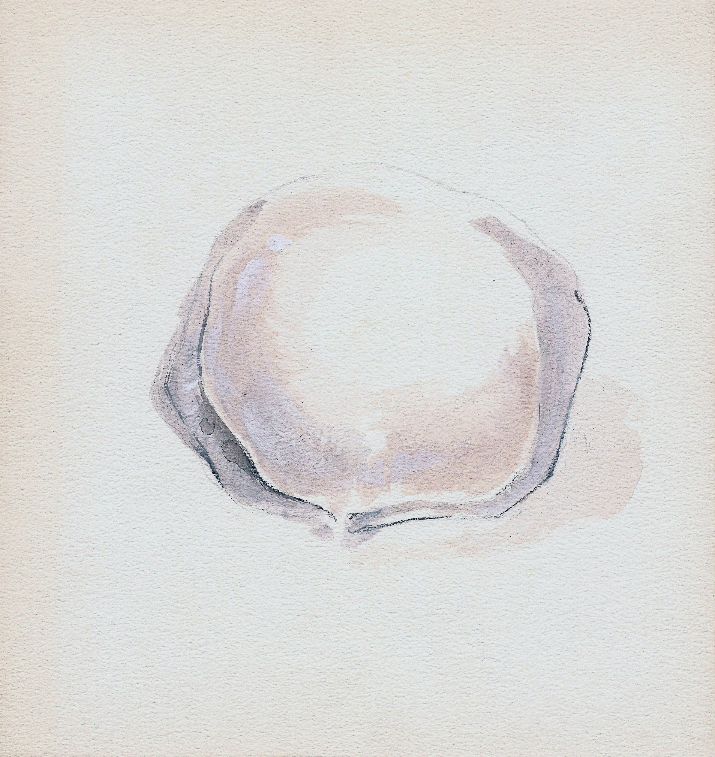 coquillage IV (2011)