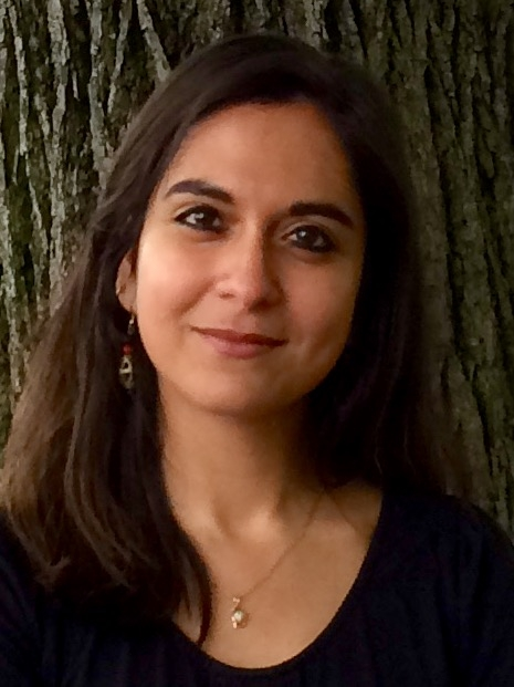 Ria Banerjee will be giving a talk at the Difficult to Name Reading Series on June 10.