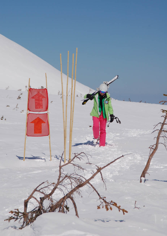 pure brandz hakuba heli skiing jen 2