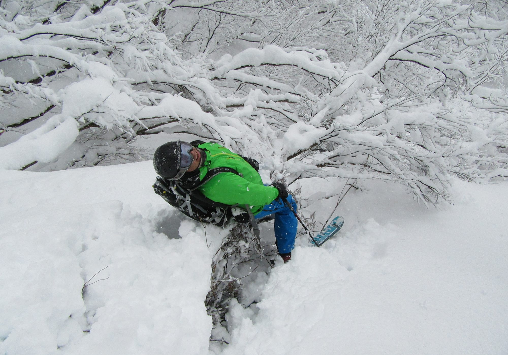 Greg from Powderhounds finds the perils of when the snow cover is rather thin in the trees. One leg went one way and the other went the other way...