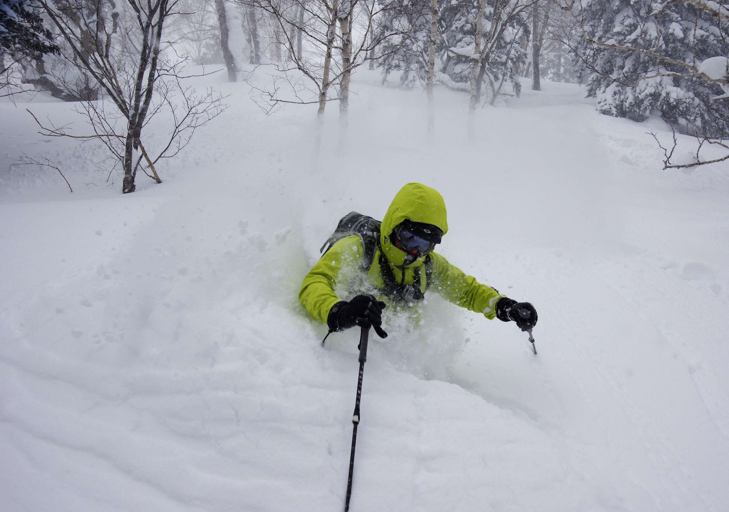 It was so snowy in the Hokkaido backcountry that Top Dog needed the hood on.