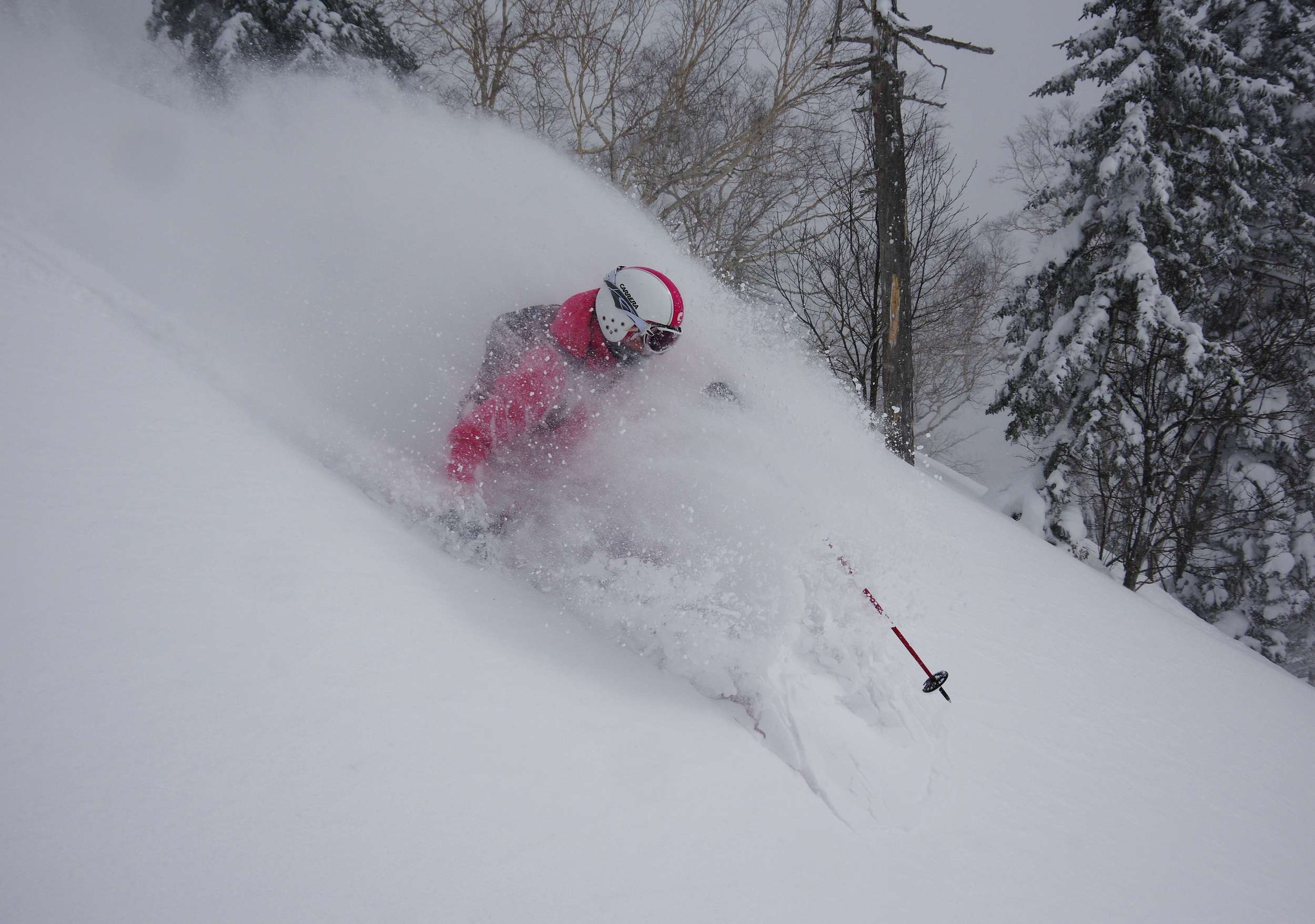 Hard not to love some powder in the face!