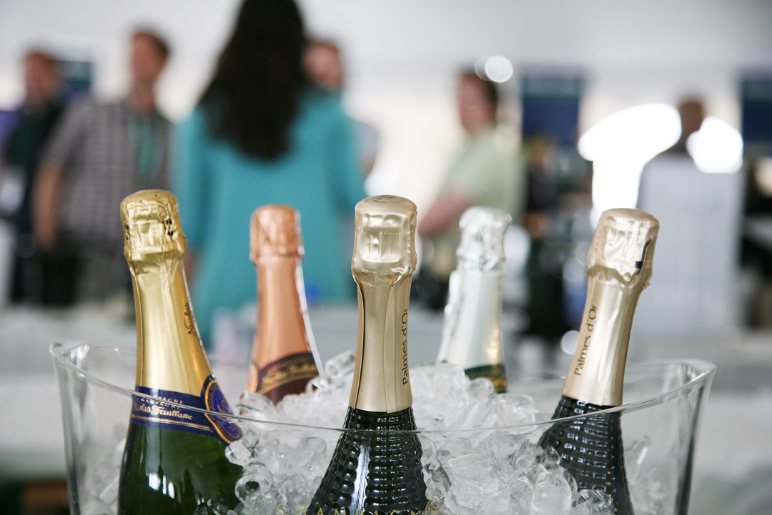 Champagne and Sparkling Wine Buying Guide MartieDuncan.com