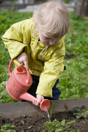 how to build a community garden or host a planting party