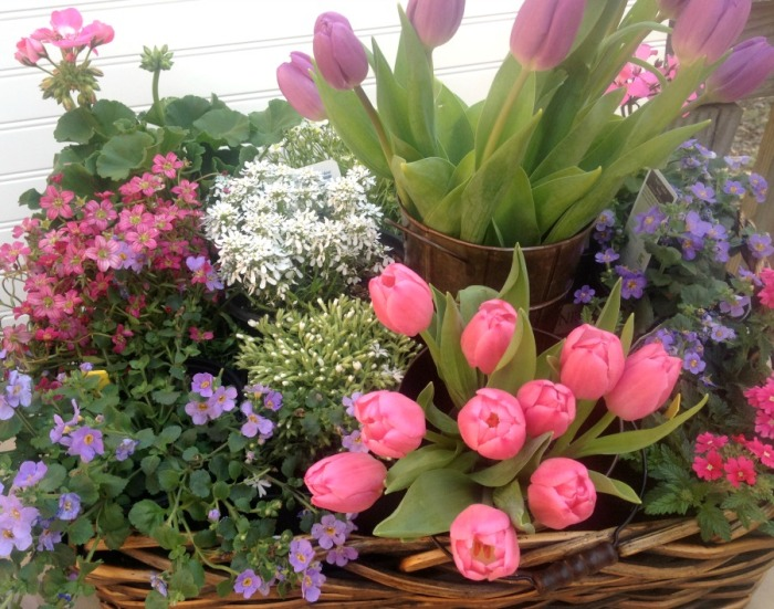 Pick up plants and flowers from the garden center to create an Easter centerpiece you can plant and enjoy all summer.