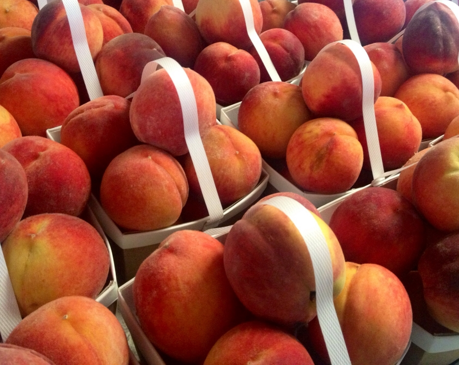 fresh picked Chilton County peaches