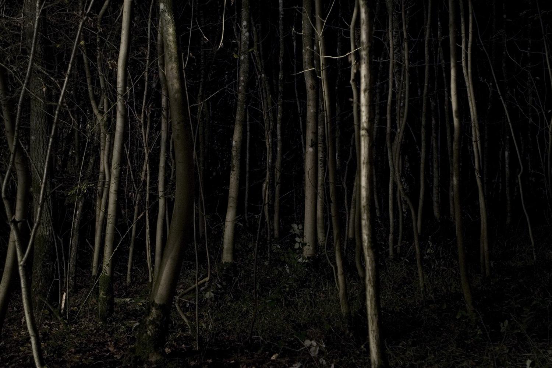 paysage_nuit06.jpg