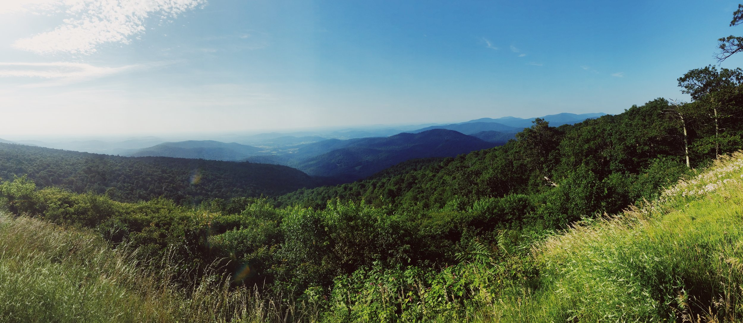 Shenandoah National Park, July 2019