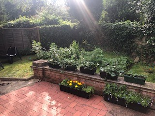 Garden party 3.jpg