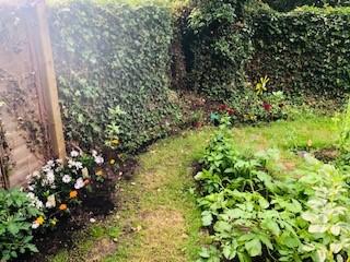 Garden party 4.jpg