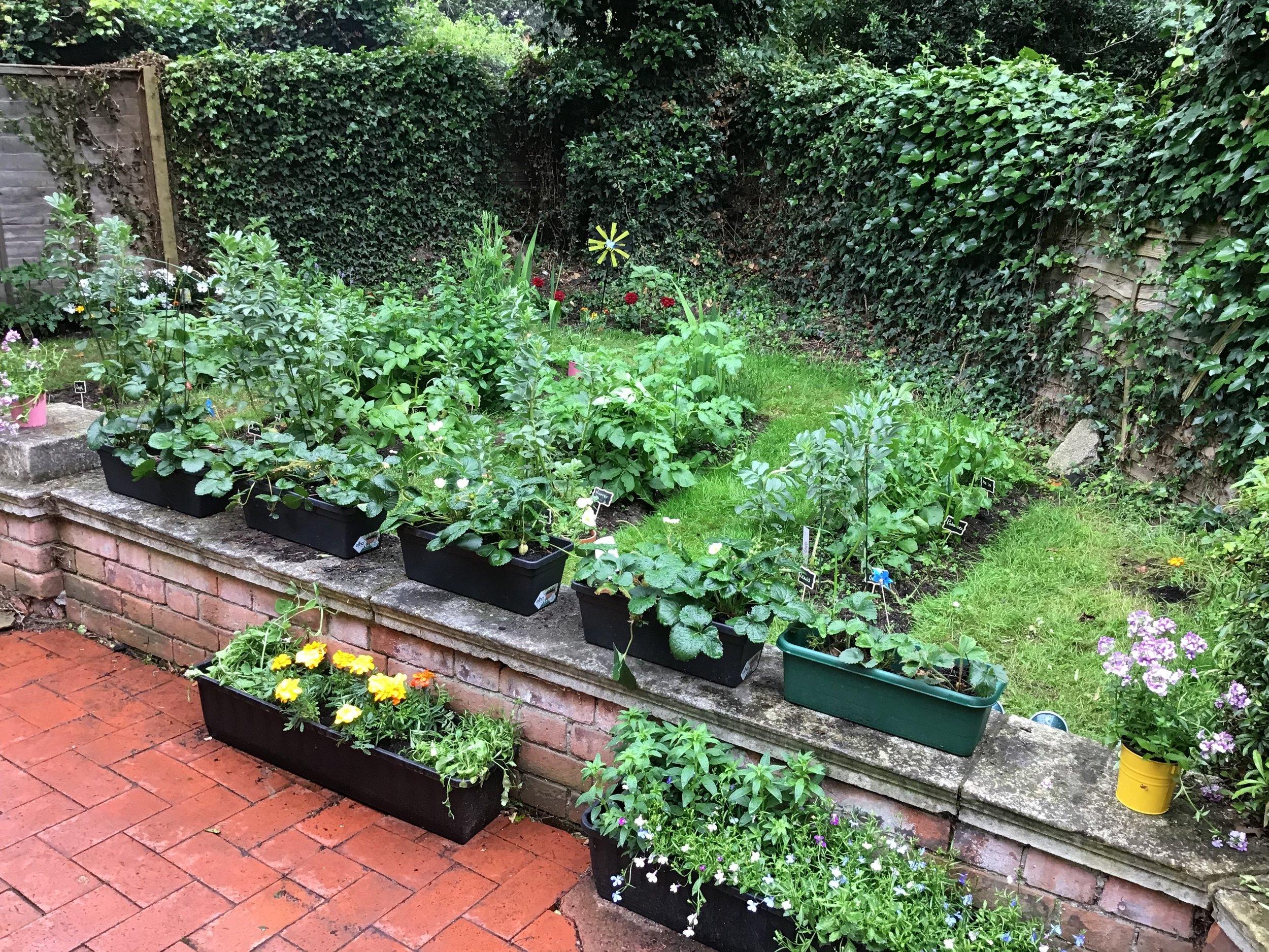 Garden party 5.jpg