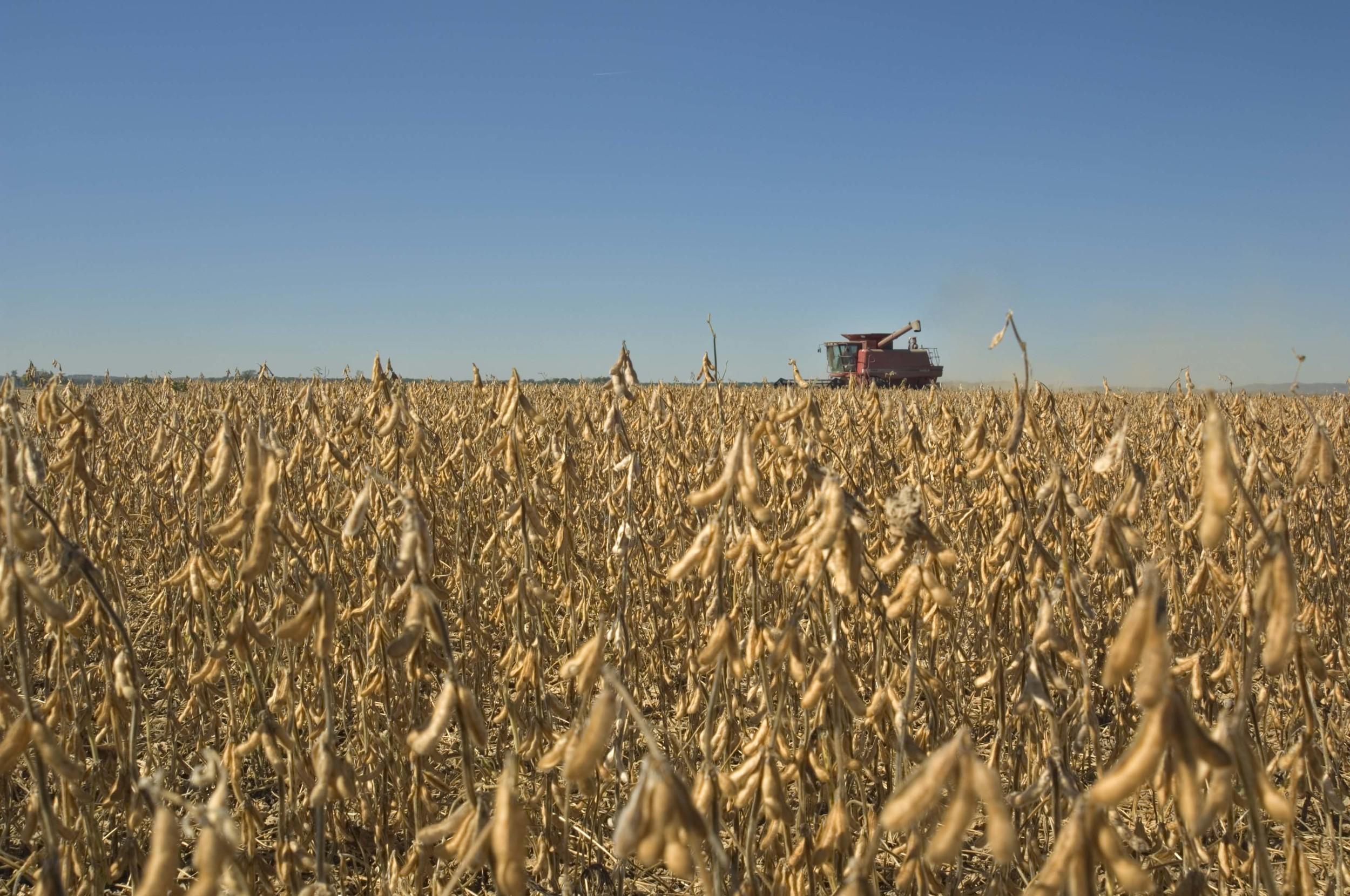Photo: United soybean Board/Flickr