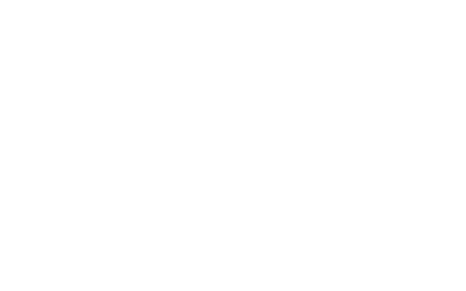 paintless_logo_white1.png