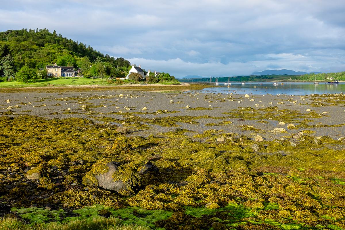 Scotland-2013-109.jpg