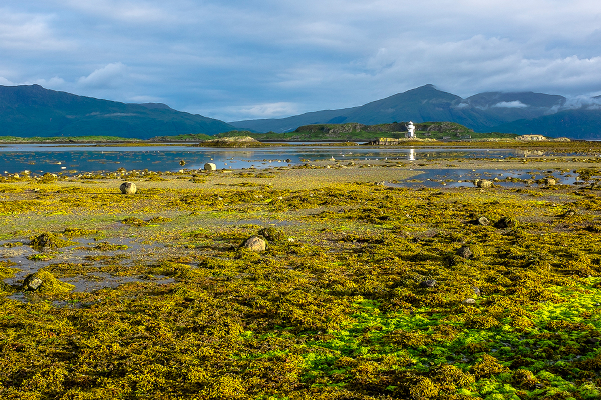 Scotland-2013-107.jpg