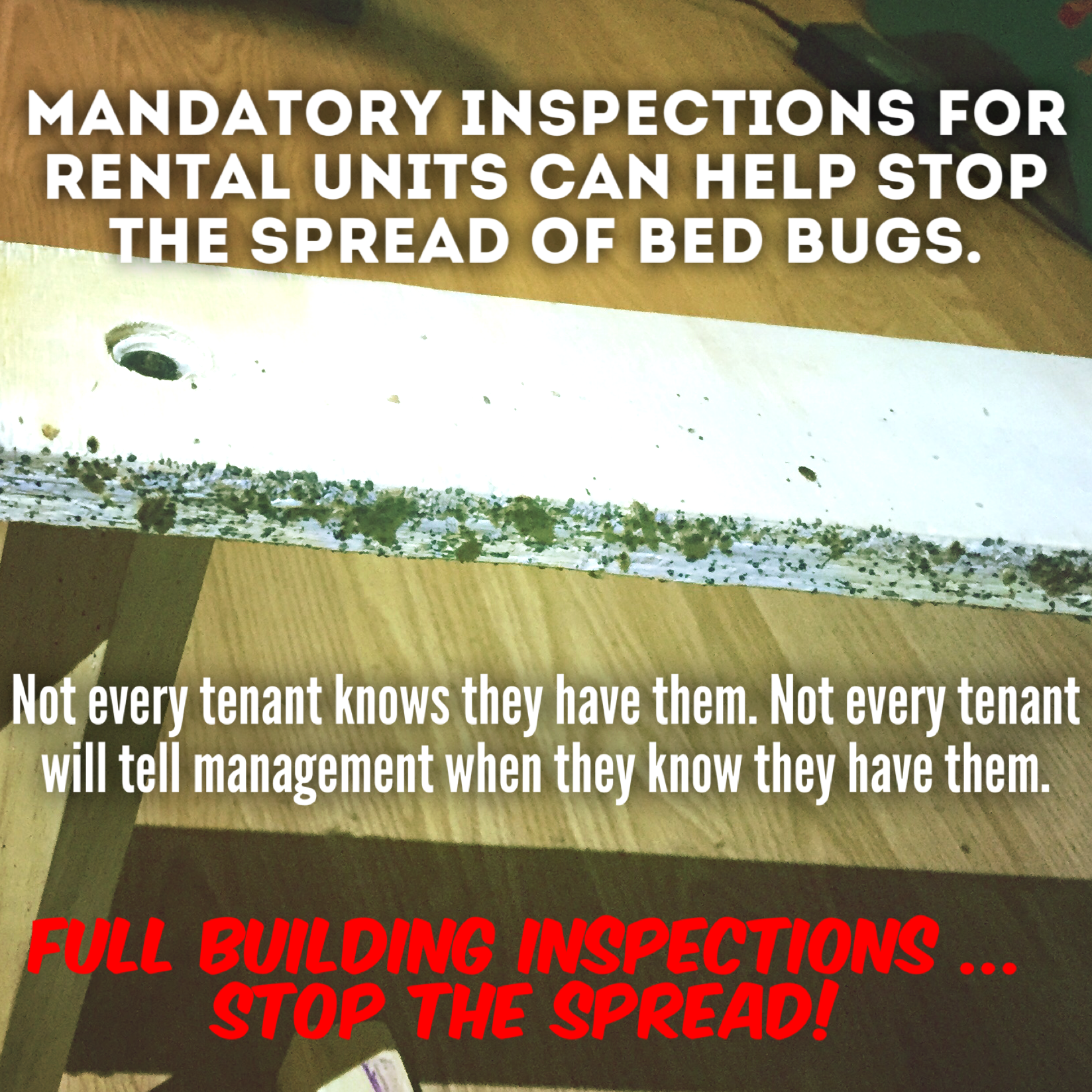 K-9-Assisted Bed bug inspections