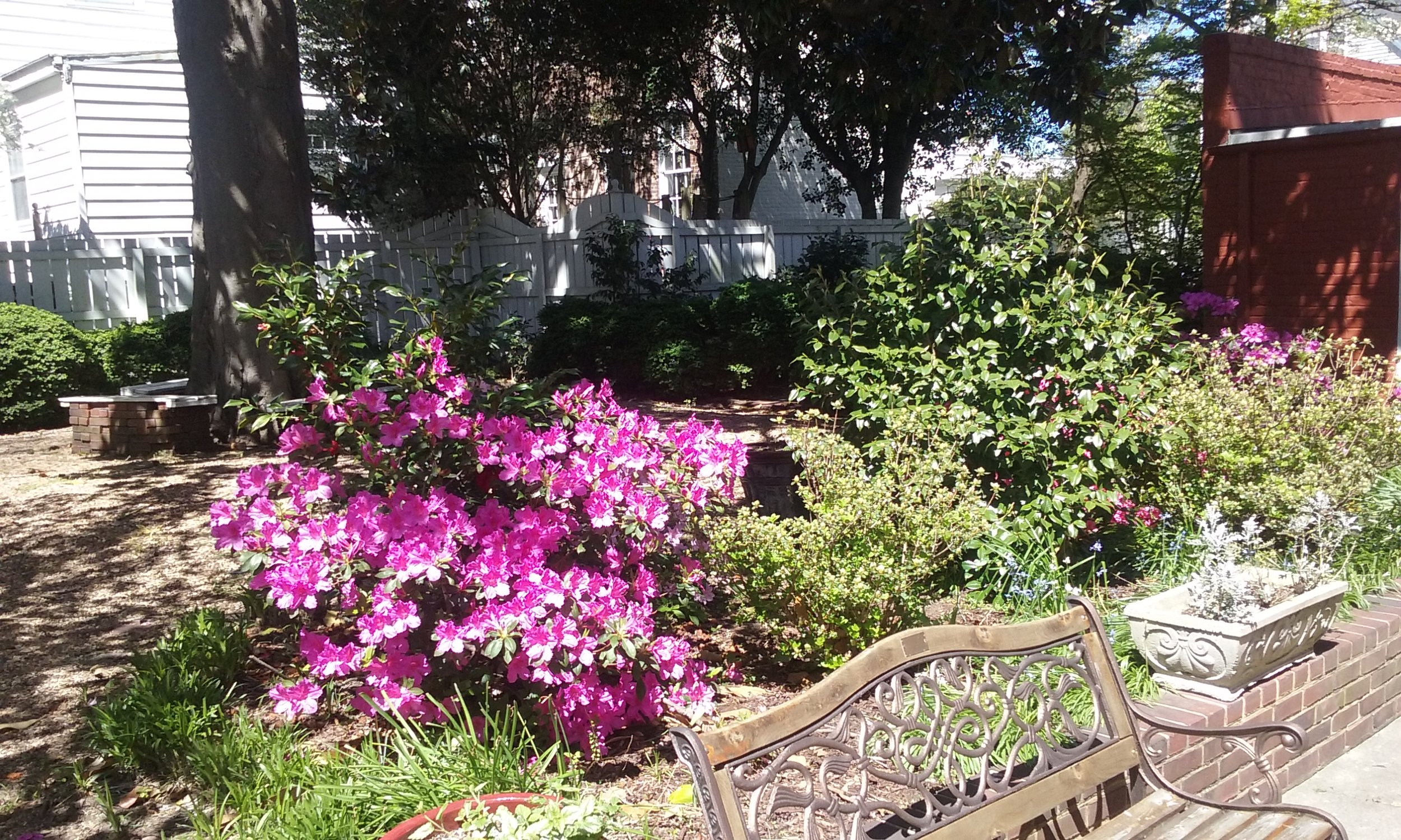 Spring has sprung in the Hill House Garden. The flowers within the garden adorn, and add color to the museum's exterior. Many thanks to one of our board members, John Joyce, for the TLC he gives to the upkeep of the garden.