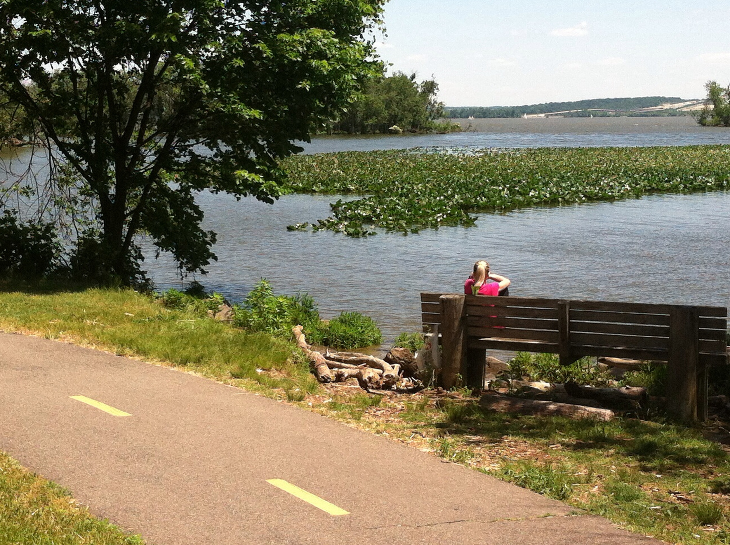 bench overlooking the Potomac.jpg