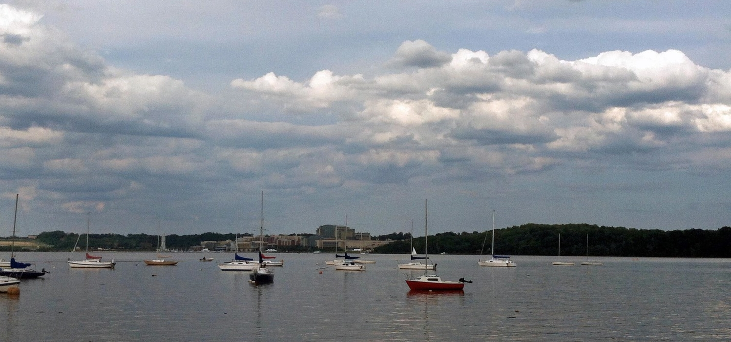 Belle Haven Marina