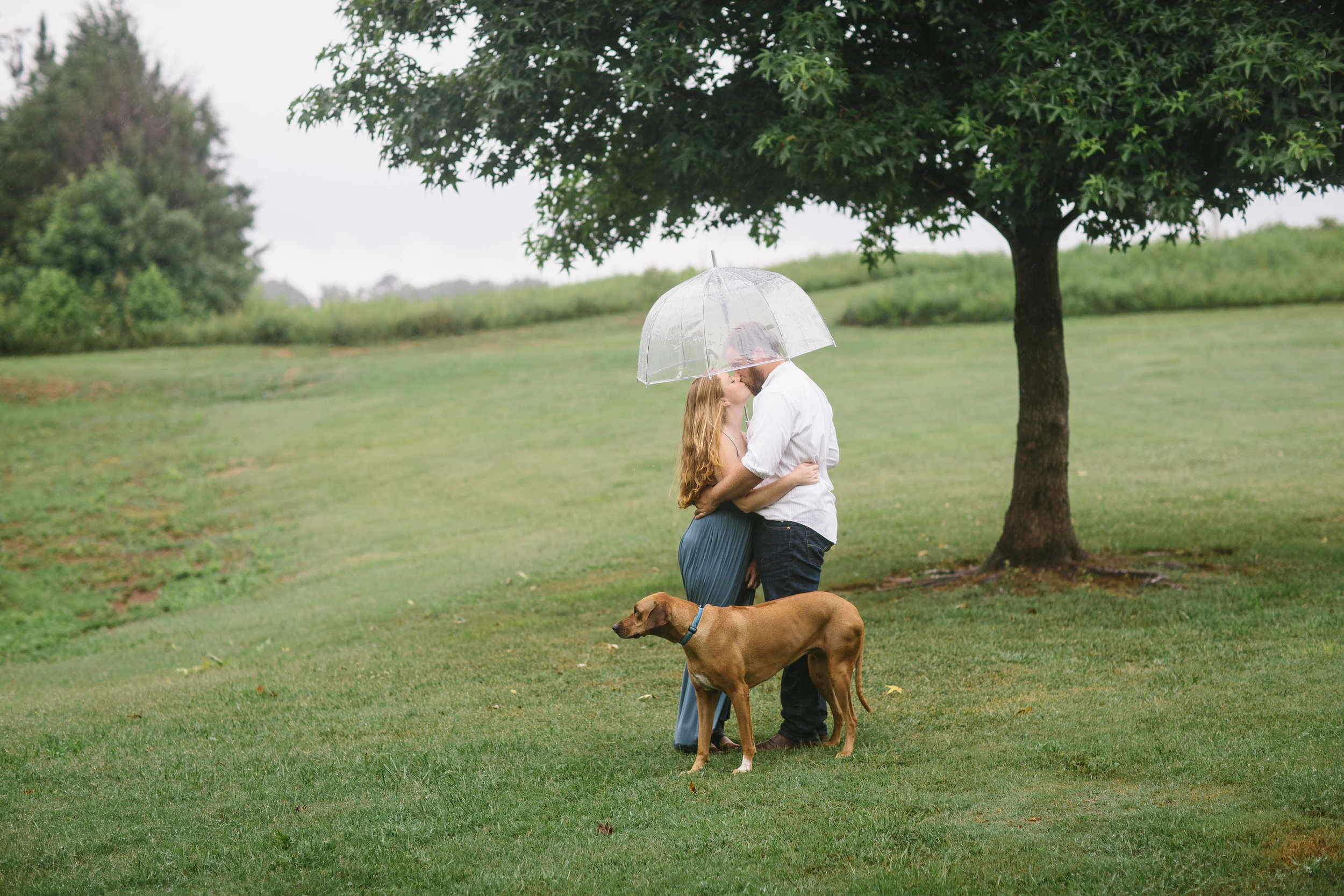 rainy engagement session.engagement photos in the rain.kiss in the rain.umbrellas.JPG