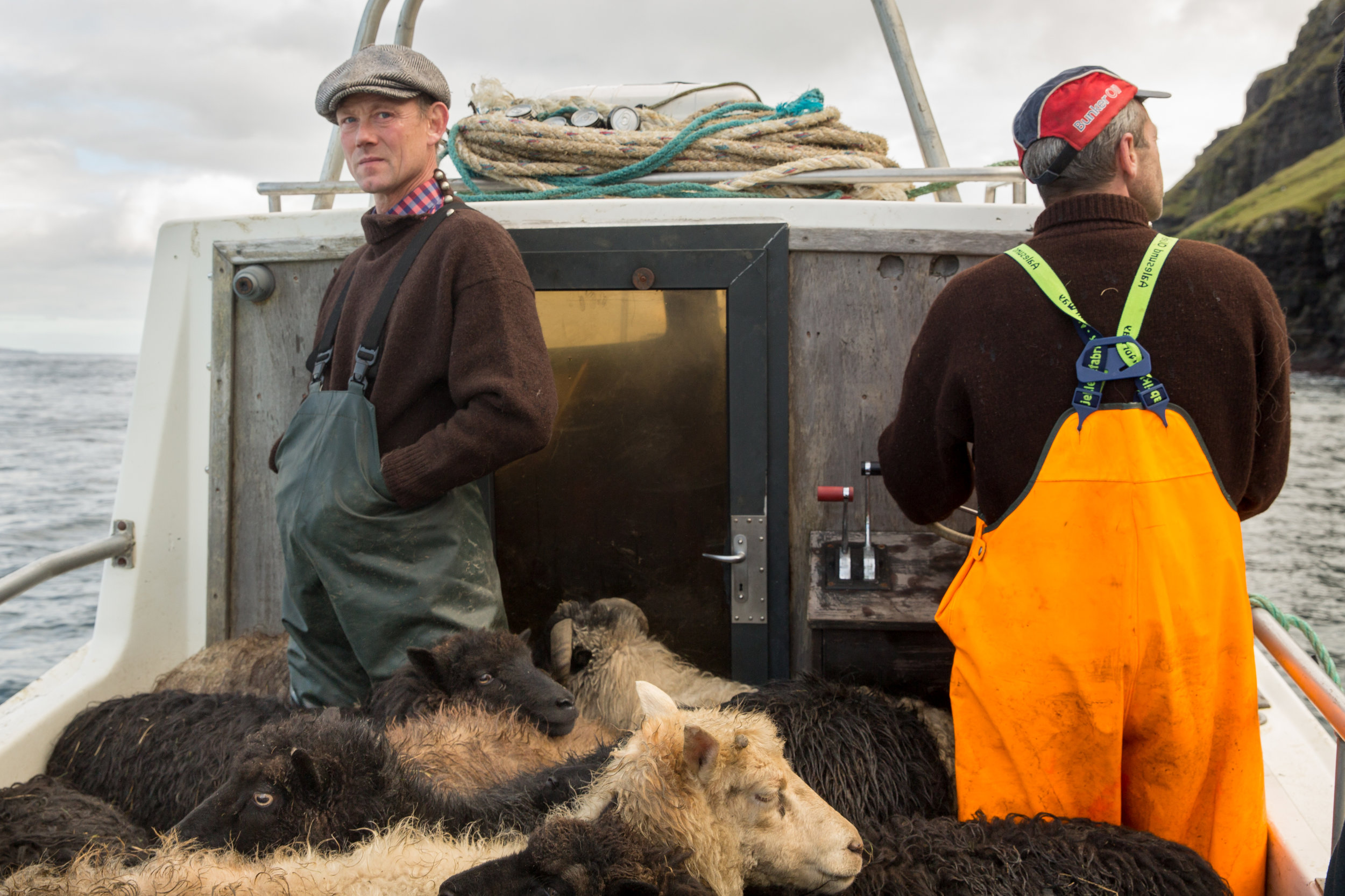 shepherds-7.jpg