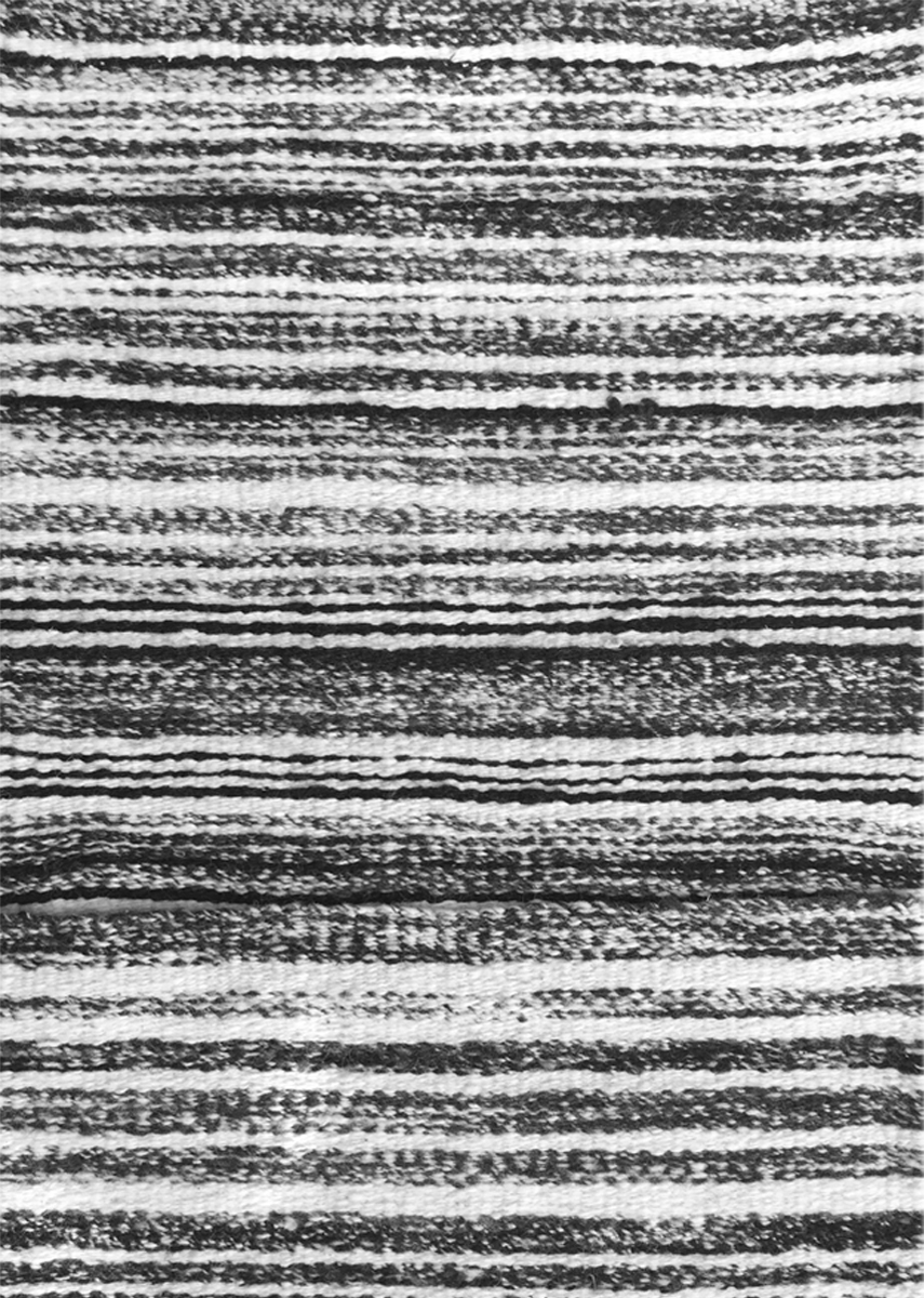 CEBRA  Pure Sheep Wool