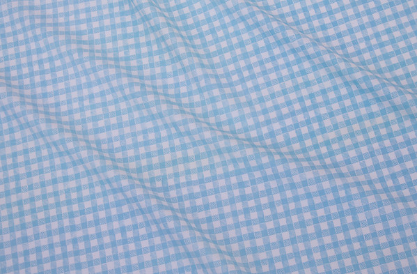 GINGHAM I LIGHT BLUE