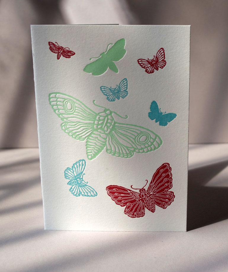 Bright Moths