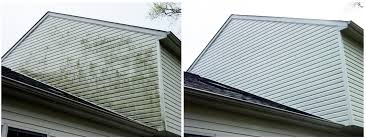 Want to boost your curb appeal? Easy! One of our low pressure house washes will kill and remove all the algae, mold, dirt and cobwebs, making your siding look brand new!