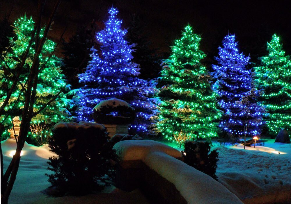 ChristmasTreeLights.jpg