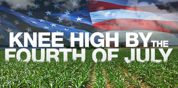 knee-high-fourth-of-july-banner.jpg