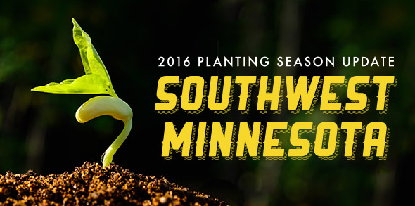 2016-season-growing-update-Southwest-Minnesota.jpg