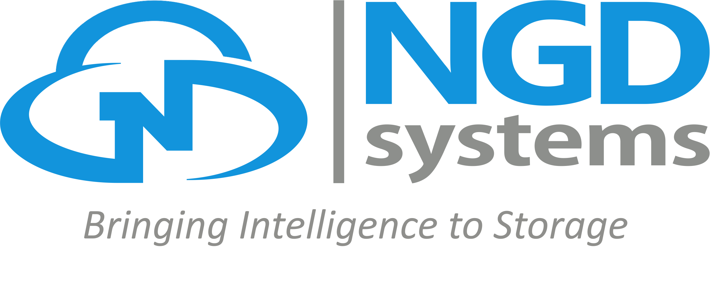 NGD Systems Logo 2.png