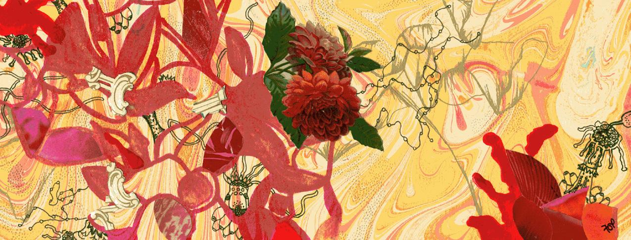 Fox_Sue.microcosmosIIweb.jpg