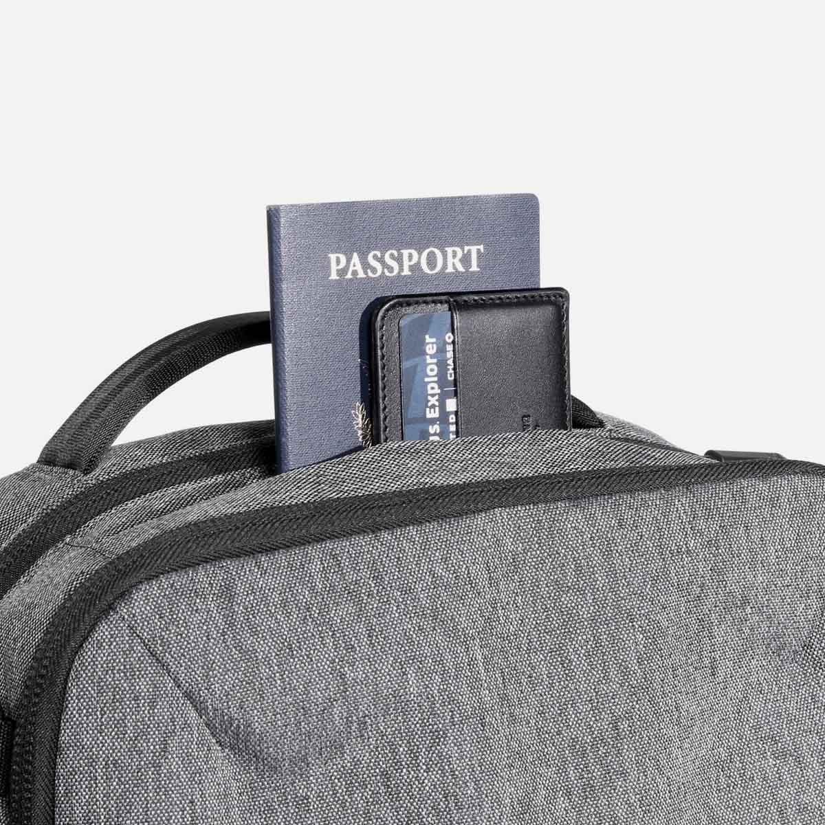 22010_fp2_gray_passport.JPG